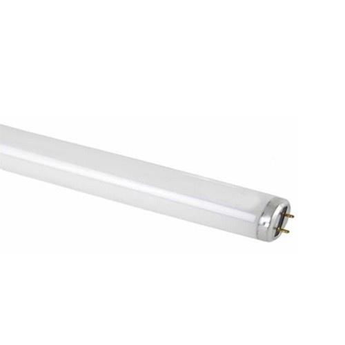 Flourescent Daylight Bulb
