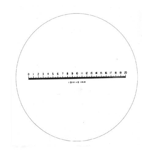 Metric Scale