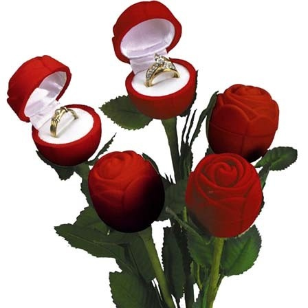"""occasions"" Valentine's Day Ring Slot Box In Red Velvet"