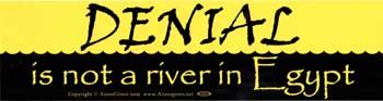 Denial Is Not A River In Egypt Bumper Sticker
