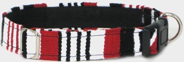 Color Pet™ Maya Tempo Collar: Small