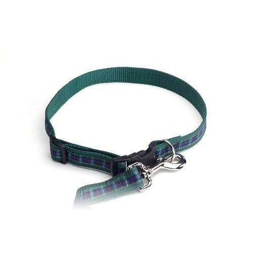 Color Pet™ Casey & Eddy Scottish/Green Collar: Medium