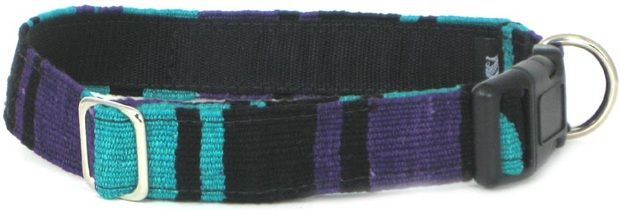 Color Pet™ Maya V2 Collar: Medium
