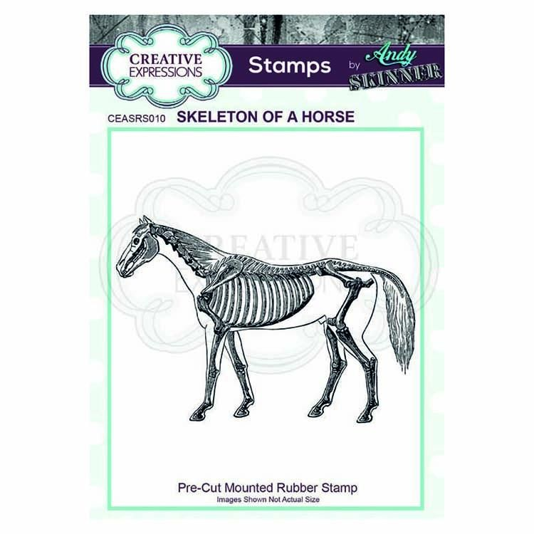 Creative Expressions Pre Cut Rubber Stamp By Andy Skinner Skeleton Of A Horse