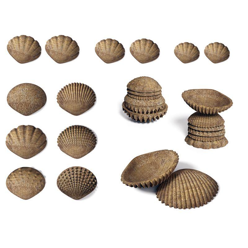 Tactile Shells