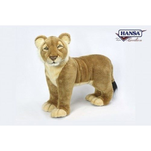 Lion Cub Standing 19''