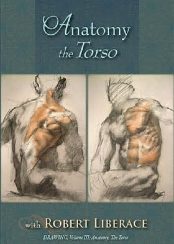 Anatomy The Torso Dvd