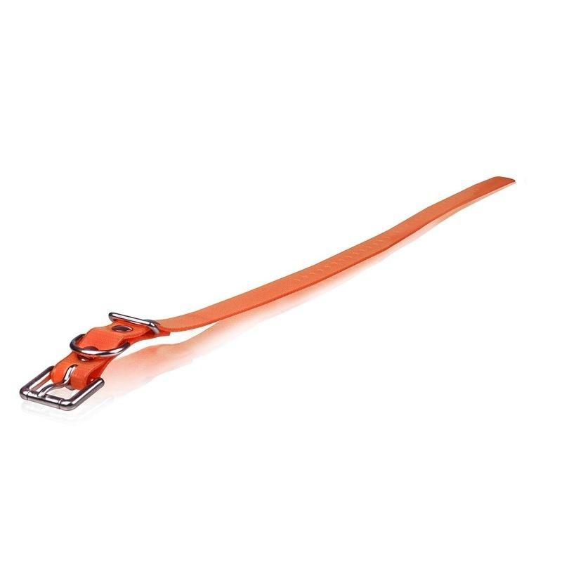 Extra Dog Collar Strap