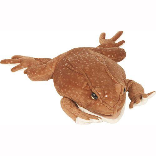 """12"""" Marine Toad"""